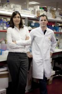 telomerase gene therapy